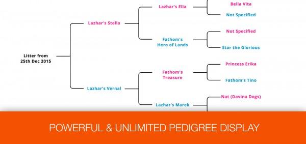 One-Page Dog Breeding Business HTML Website - Pedigree