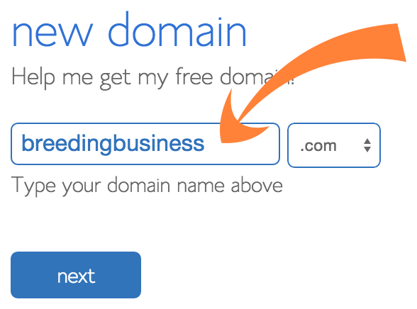 Bluehost - Enter Your Domain Name