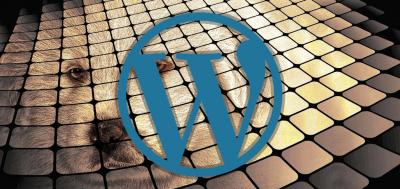 Why Use WordPress For Dog Breeding Websites