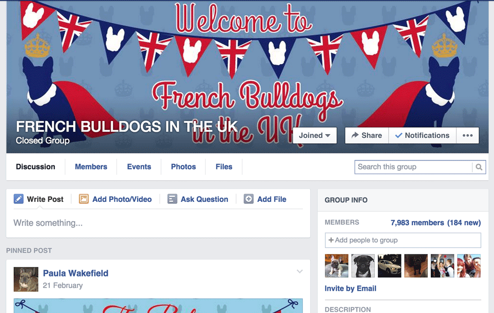 Facebook Group FRENCH BULLDOGS IN THE UK