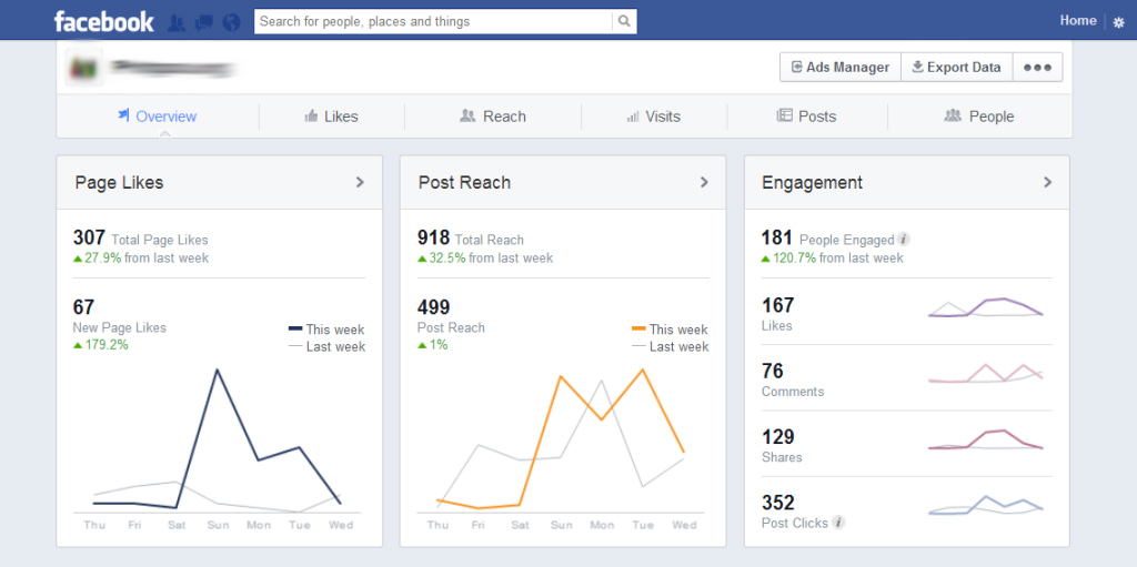 Example of a Facebook Insights page.