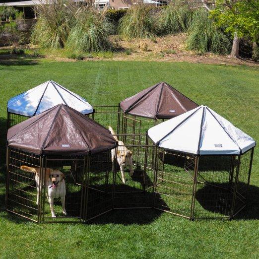 Advantek Pet Gazebo Outdoor Kennel