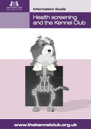 Health screening and the Kennel Club