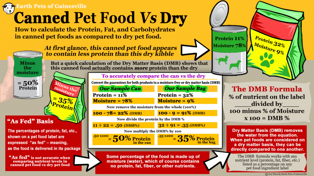 Dry Kibble vs Canned Dog Food