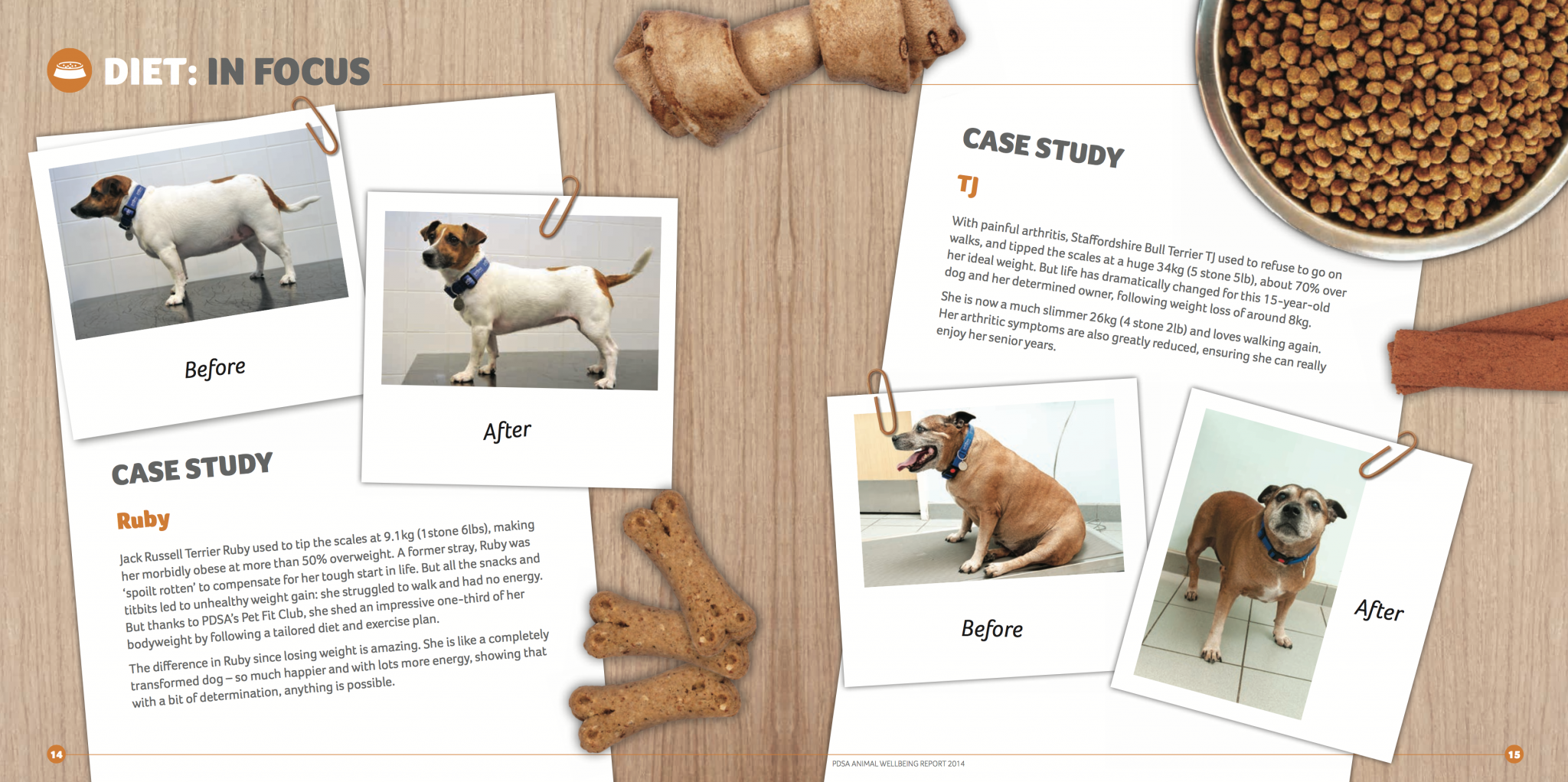 Case studies show how much of a better life dogs get once they lost weight. (Credits: PDSA Animal Wellbeing Report 2014)