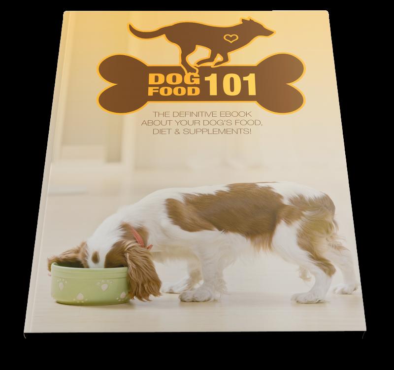 Dog Food 101 Ebook Cover