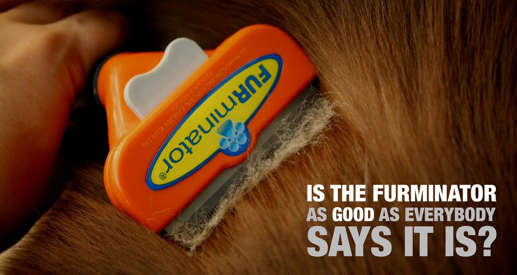 Review Furminator For Dogs Best Hair Deshedding Tool