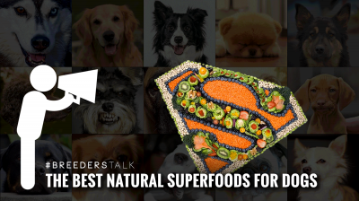 breeders talk about natural superfoods