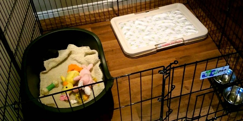 Best dog and puppy playpens