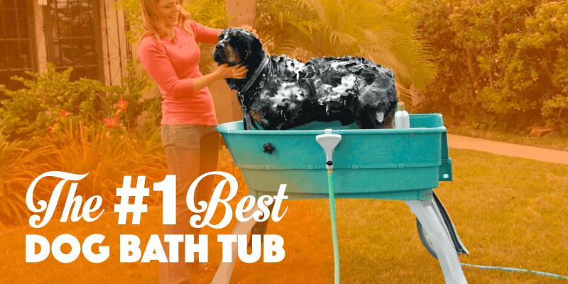 best dog bath tub (booster bath)