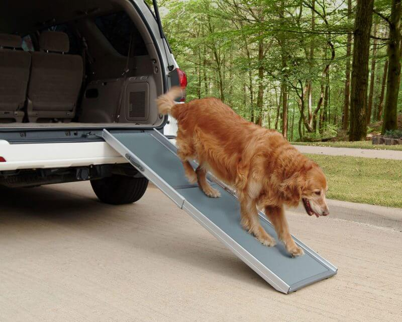 Solvit XL Telescopic Dog Ramp