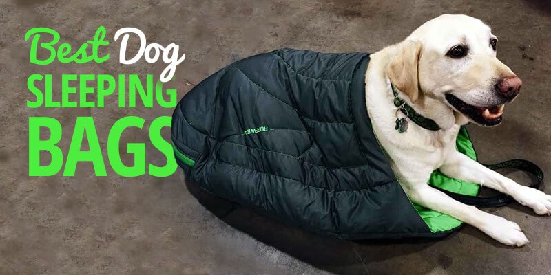 dog sleeping bag review