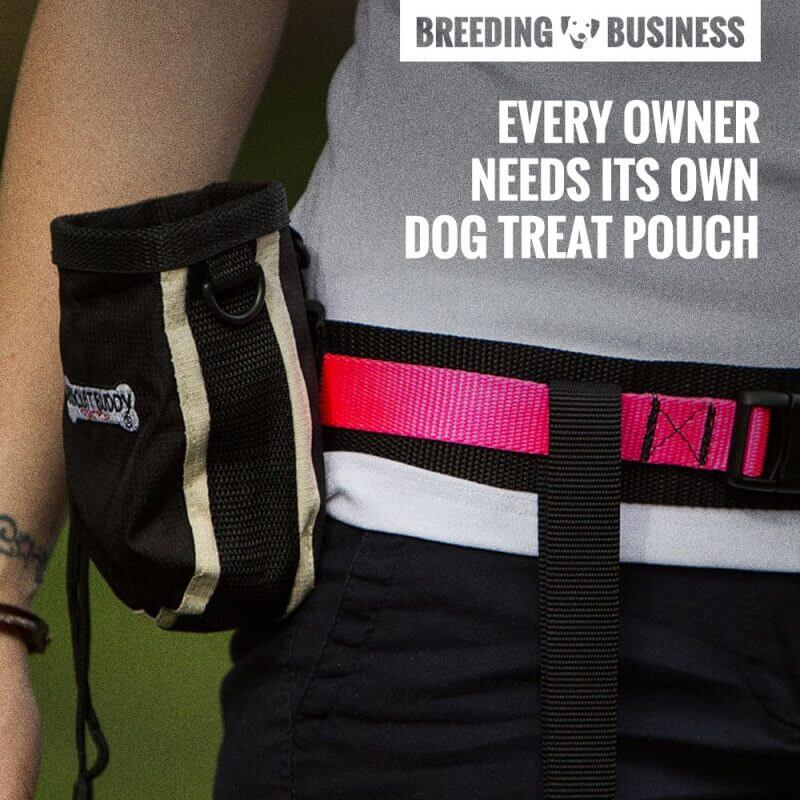 dog treat pouch quote