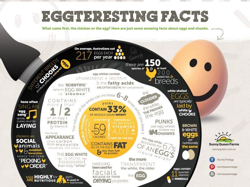 egg nutritional facts infographic
