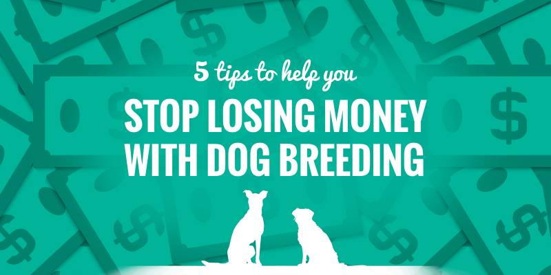 How To Stop Losing Money With Dog Breeding