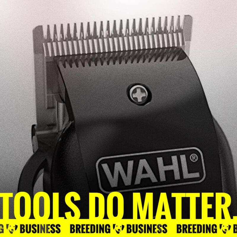 Dog clippers and grooming tools matter.