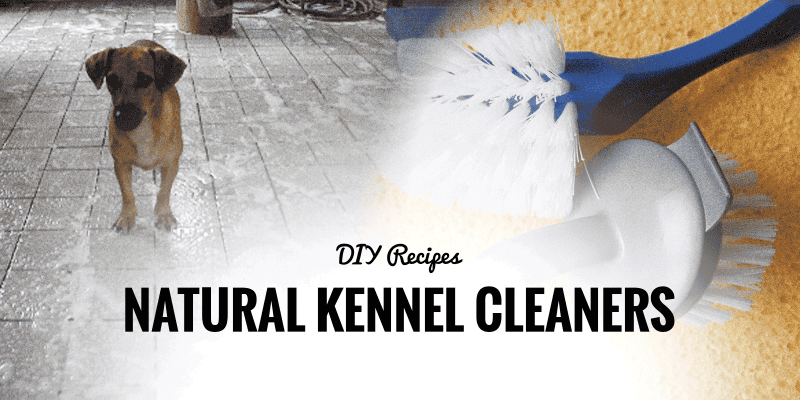 natural kennel cleaners
