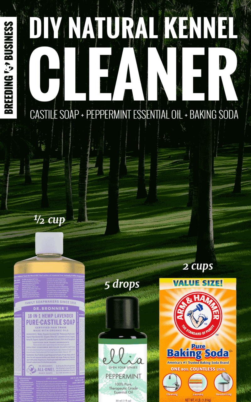 homemade natural kennel cleaner