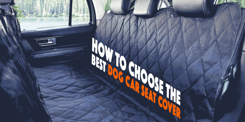 Best Dog Car Seat Covers for Cars, SUVs and Trucks
