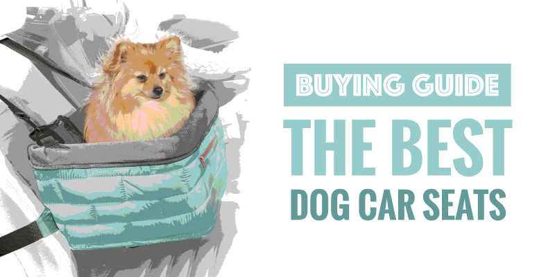 Best Dog Car Seats — Buying Guide for Dog Booster Seats