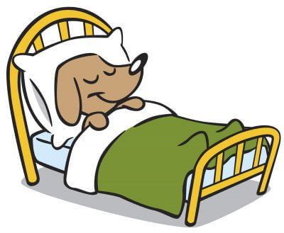 dog blanket cartoon