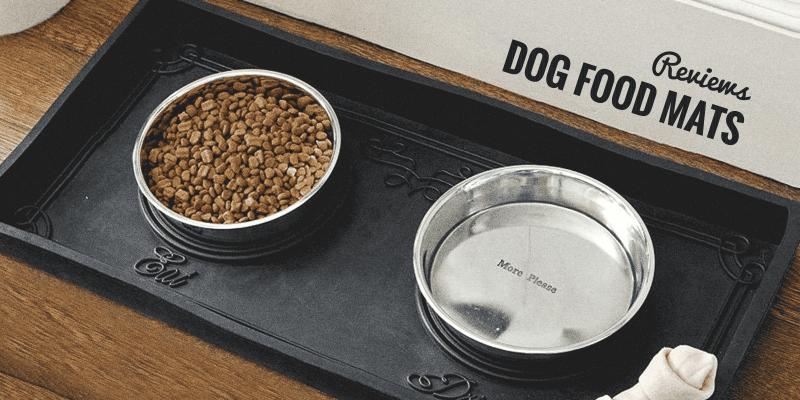 Best Dog Food Mats