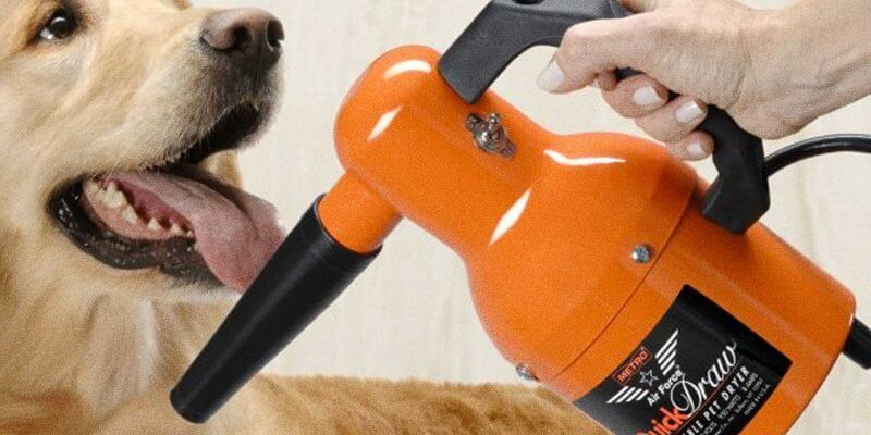 how to dry a dog using a dog blow dryer