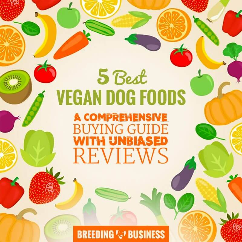 Reviews of Best Vegan Dog Foods