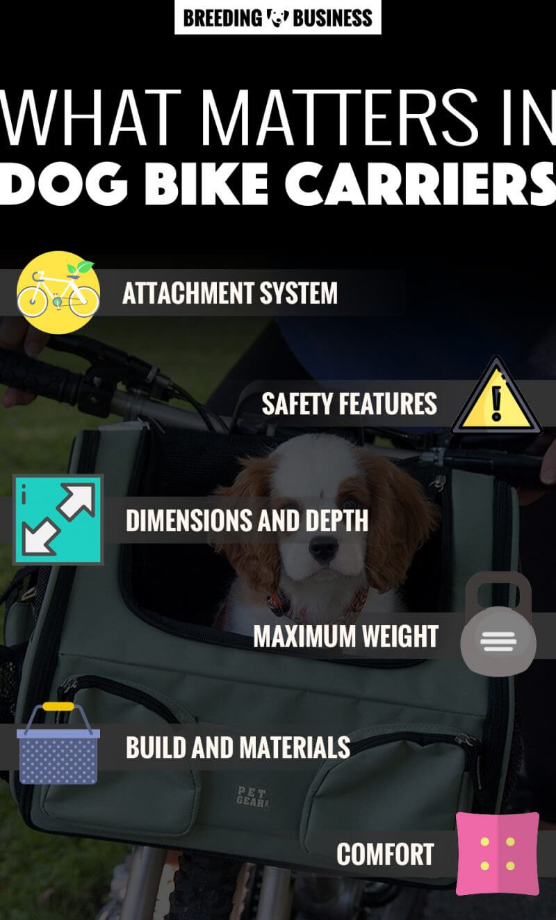 best dog bike carriers infographics
