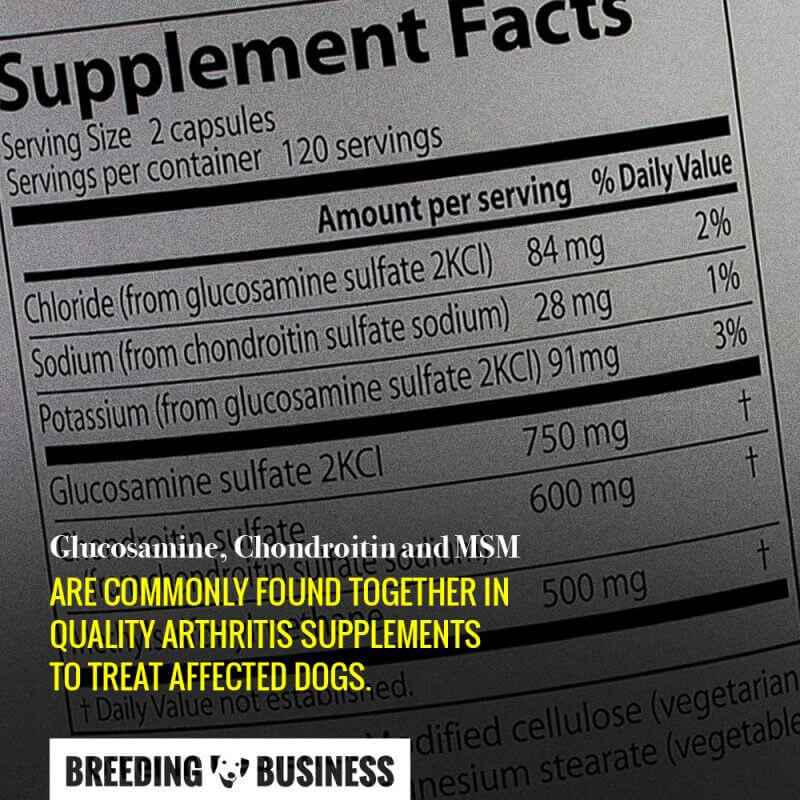 glucosamine chondroitin msm for dogs