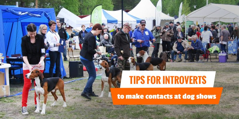 How To Make Contacts At Every Dog Show