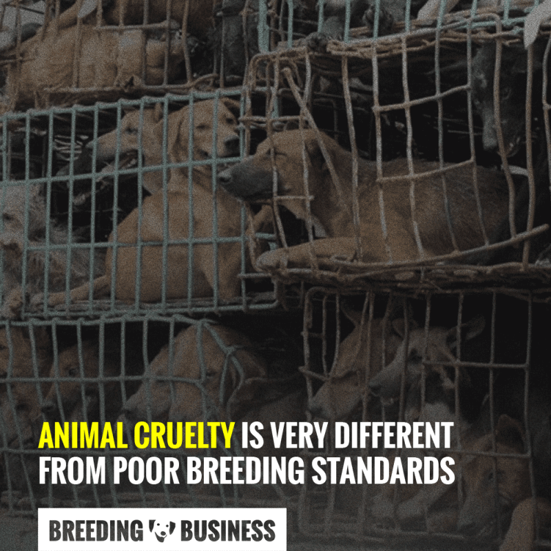 difference animal cruelty poor breeding standards