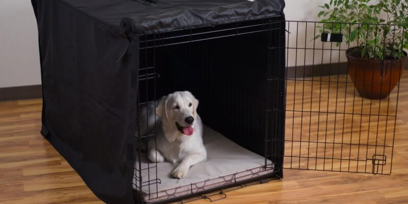 Best Dog Kennel Covers