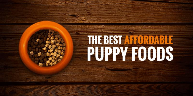 Best Cheap Puppy Foods