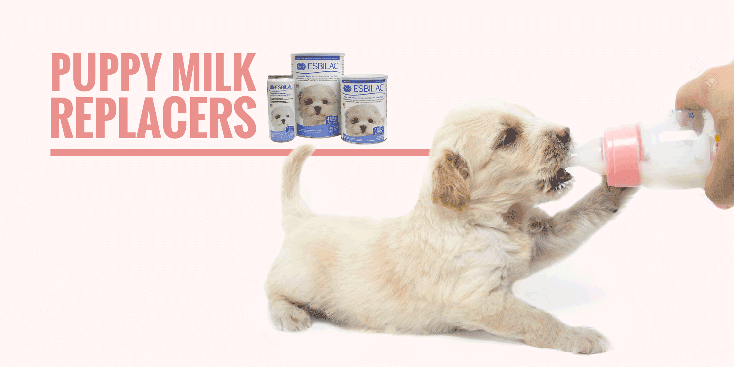 Top 5 Best Puppy Milk Replacers Powder Liquid Goat S Milk