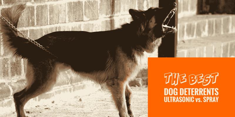 Dog deterrent sprays vs ultrasonic dog repellers