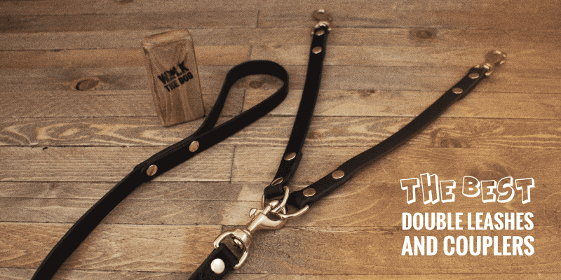 Best Double Dog Leashes