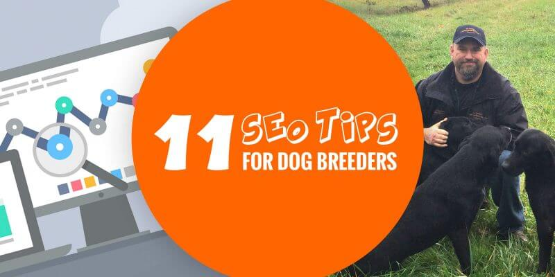 SEO tips for dog breeders