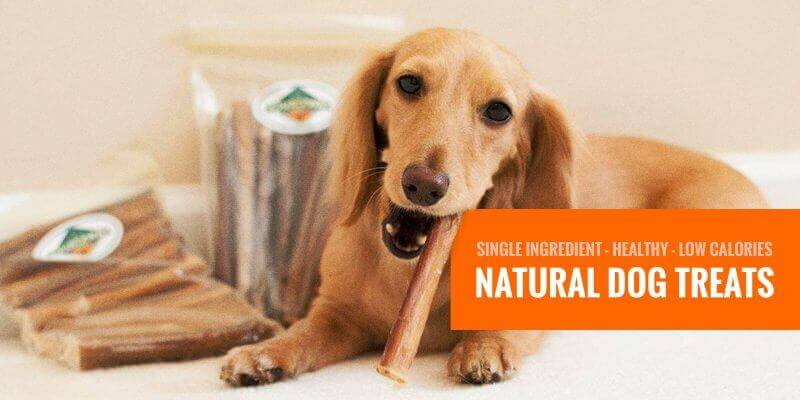 Best Natural Dog Treats