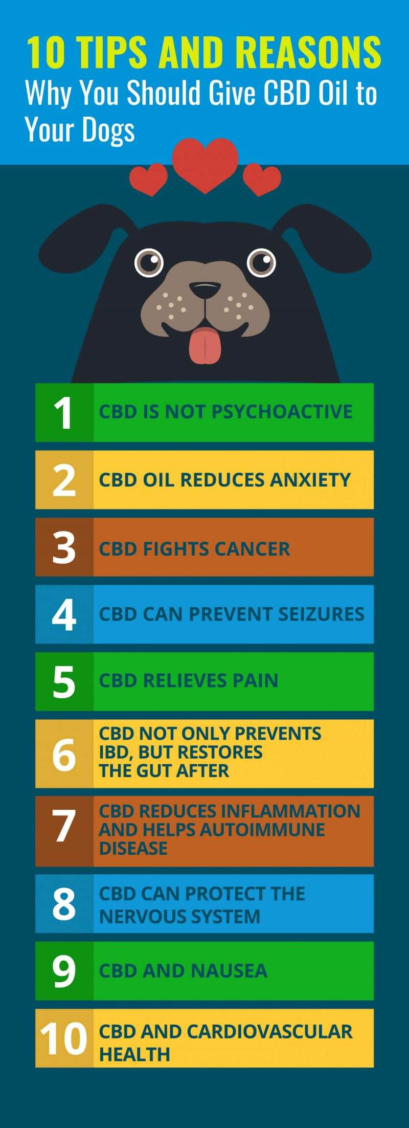 Facts About CBD Oil for Dogs