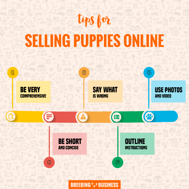 tips for selling puppies online