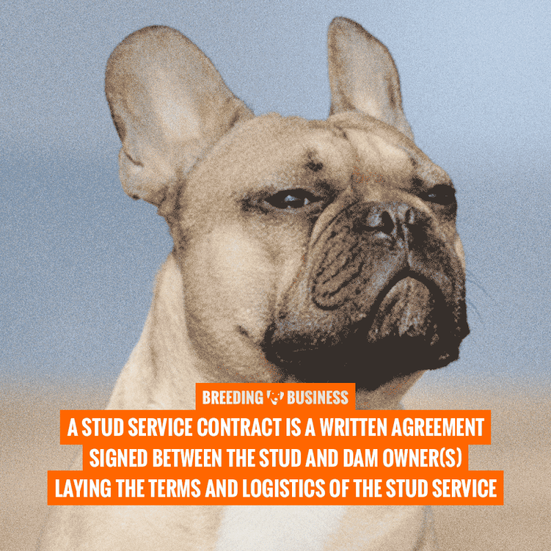 stud service contract