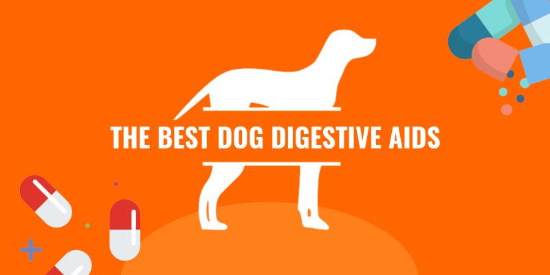 dog digestive aids