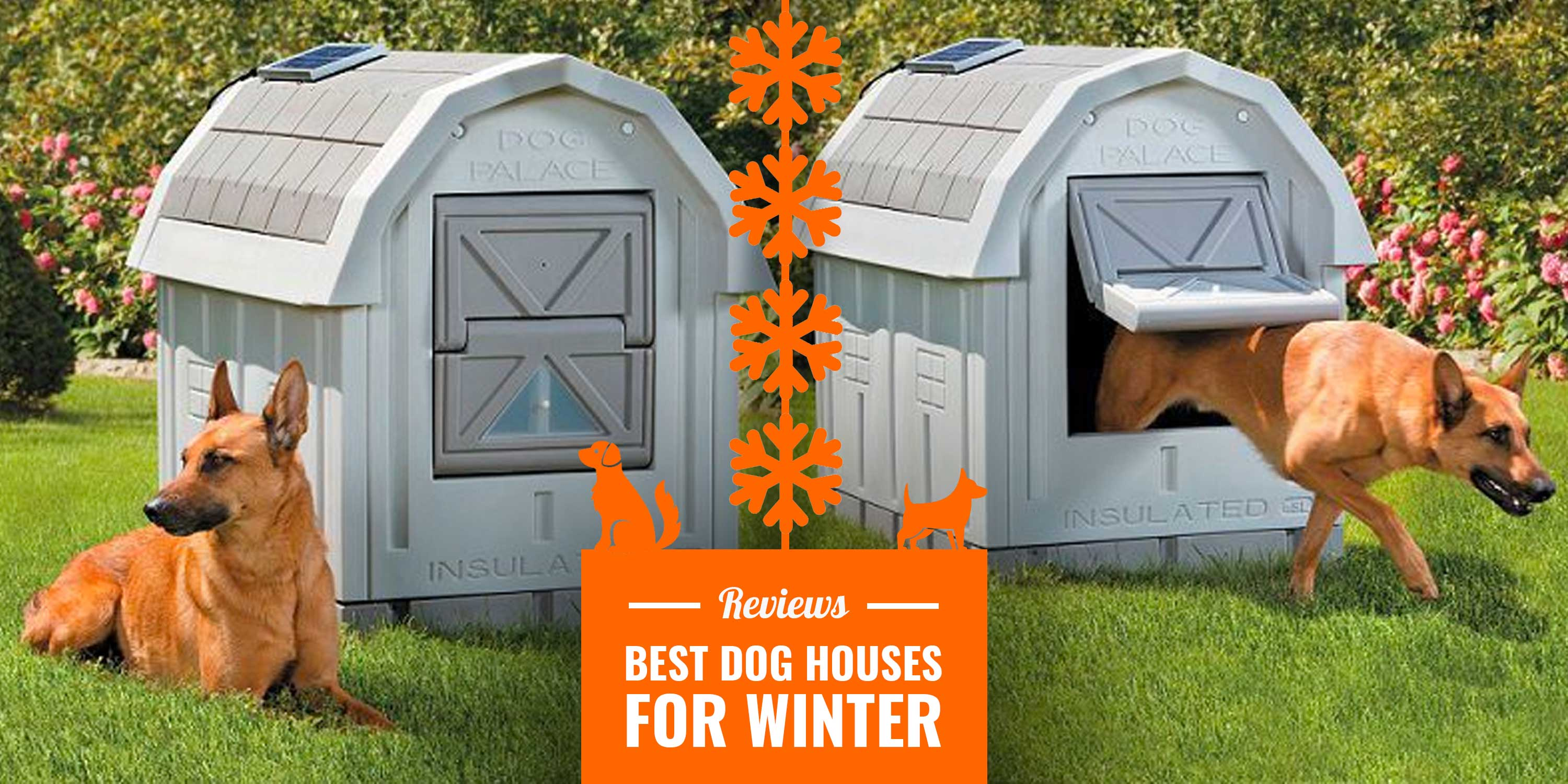 Picture of: 10 Best Dog Houses For Winter Reviews Insulation Tips Diy