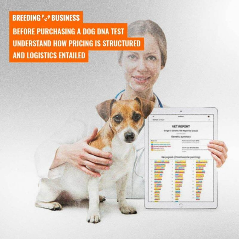 price of dog dna tests and kits