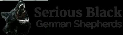 Serious Black German Shepherds logo