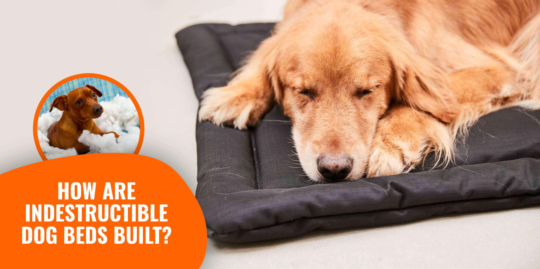 How Are Indestructible Dog Beds Built Diy Designs Materials Etc