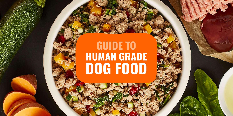 Best Human Grade Dog Foods – Top 5
