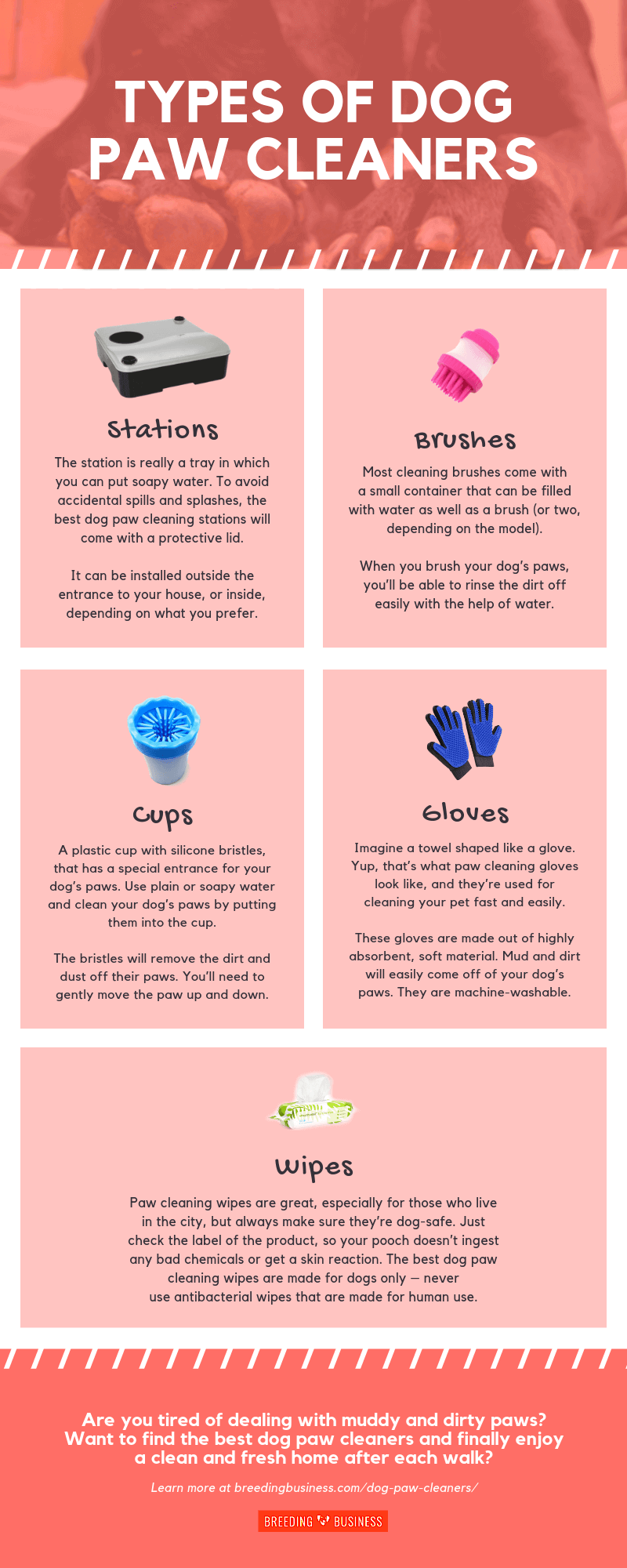 Types of Dog Paw Cleaners (Infographic)