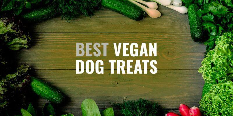 best vegan dog treats